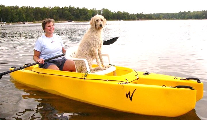 Take your best friend for a paddle.